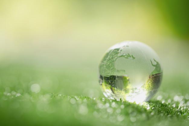 gros-plan-cristal-reposer-herbe-dans-foret_1150-12730
